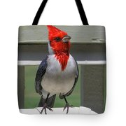 Red Crested Cardinal Tote Bag