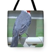 Red Crested Cardinal No 2 Tote Bag