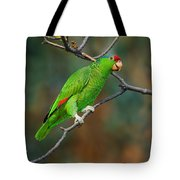 Red-crowned Amazon Tote Bag