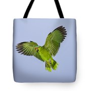 Red-crowned Parrot Tote Bag