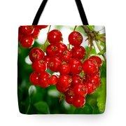 Red Currants Ribes Rubrum Tote Bag