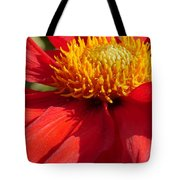 Red Dahlia Coccinea Tote Bag