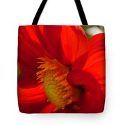 Red Dahlia Elegance Tote Bag