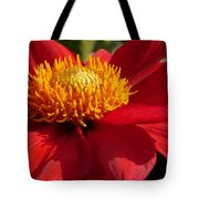 Red Dahlia Starlet Tote Bag