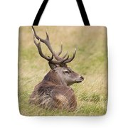 Red Deer  Cervus Elaphus Tote Bag