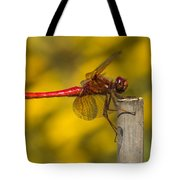 Red Dragonfly Waiting Tote Bag
