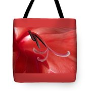 Red Dream - Gladiolus Tote Bag