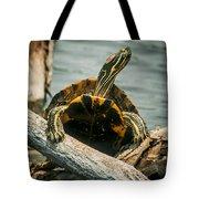 Red Eared Slider Turtle Tote Bag