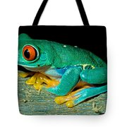 Red Eye Tree Frog Tote Bag