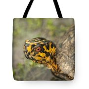 Red Eyed Alabama Box Turtle - Terrapene Carolina Tote Bag