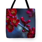 Red Flowering Quince Tote Bag
