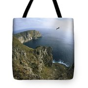 Red-footed Booby And Swallow-tailed Tote Bag