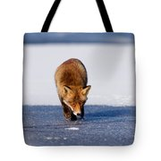 Red Fox Crossing A Frozen Lake Tote Bag