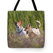 Red Fox Cub With Jack Russel Tote Bag