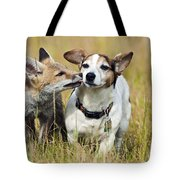 Red Fox Cub With Jack Russell Tote Bag
