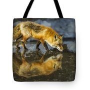 Red Fox Has A Drink Tote Bag