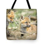 Red Fox Kits Tote Bag