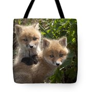 Red Fox Kits Playing Alaska Tote Bag