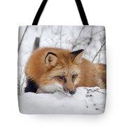 Red Fox Making Dinner Plans Tote Bag