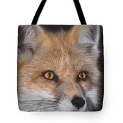Red Fox Portrait Wildlife Rescue Tote Bag