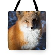 Red Fox Standing Tote Bag