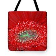 Red Gerbera Flower  Tote Bag