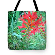 Red Gift Tote Bag