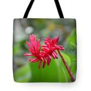 Red Ginger Tote Bag