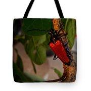 Red Glowing Beetle Tote Bag