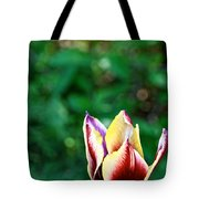 Red Gold And Green Tote Bag