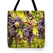 Red Grapes In Vineyard Tote Bag