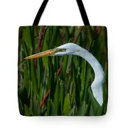 Red Green And White Tote Bag