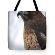 Red Hawk I Tote Bag