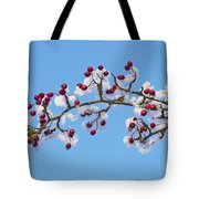 Red Haws Frosted By Snow Tote Bag