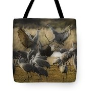 Red Headed Tempers Tote Bag