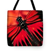 Red Heliconius Dora Butterfly Tote Bag