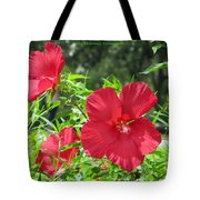 Red Hollyhocks Tote Bag