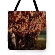 Red In Row Tote Bag