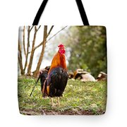 Red Jungle Fowl - Moa Tote Bag
