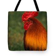 Red Jungle-fowl Tote Bag