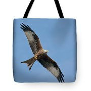 Red Kite In Flight Tote Bag