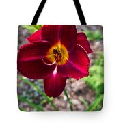 Red Lady Lily 1 Tote Bag