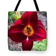 Red Lady Lily 4 Tote Bag