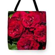 Red Lavaglut Lavaglow Floribunda Roses Tote Bag