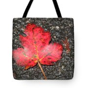 Red Leaf On Pavement Tote Bag