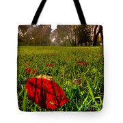 Red Leaf Under The Hot Autumn Sun  Tote Bag