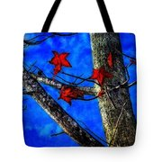 Red Leaves Blue Sky In Autumn Tote Bag