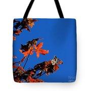 Red Leaves Blue Sky Tote Bag