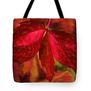 Red Leaves - Cave Dwelle Tote Bag