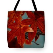 Red Leaves On The Branches In The Autumn Forest. Tote Bag